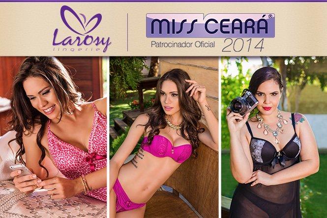 Nova coleção Larosy Lingerie 2014 24a52b4017b